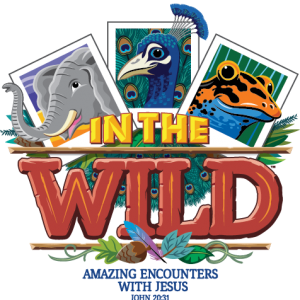 In the Wild Full Logo